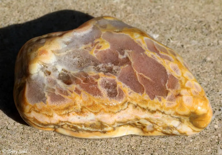 Agate - South Dakota