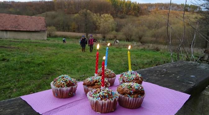 Oslava narozenin v přírodě – Únětice, Lasíci a koníci