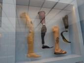 Mensch - Deutsches Hygienemuseum