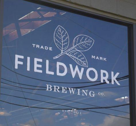 Fieldwork 01