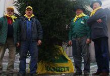 Albero di Natale e pensionati Coldiretti in Duomo a Novara