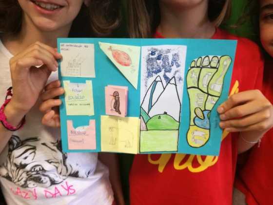 Progetto Lapbook Scuola Sacro di Novara