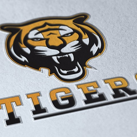 Tigers Sports Logo Design
