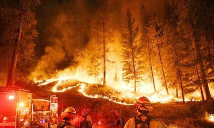 كوارث طبيعية حدثت وهزت العالم 2019