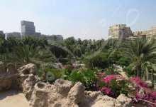 """صورة """" حديقة الجبلاية """" شاهد عيان على الحب الأسطوري بين أوجيني وإسماعيل باشا"""