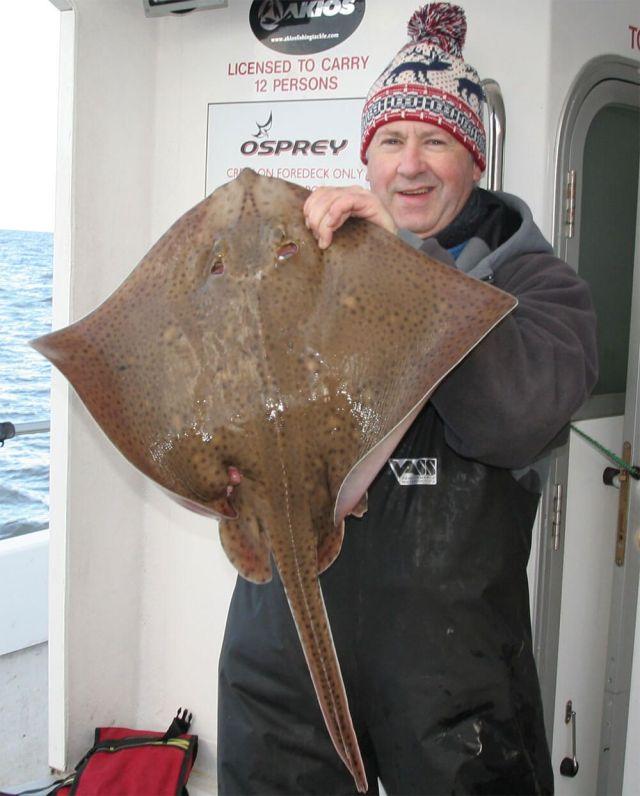 Bristol Channel Cod Fishing: 13lb blonde ray - Wayne Thomas