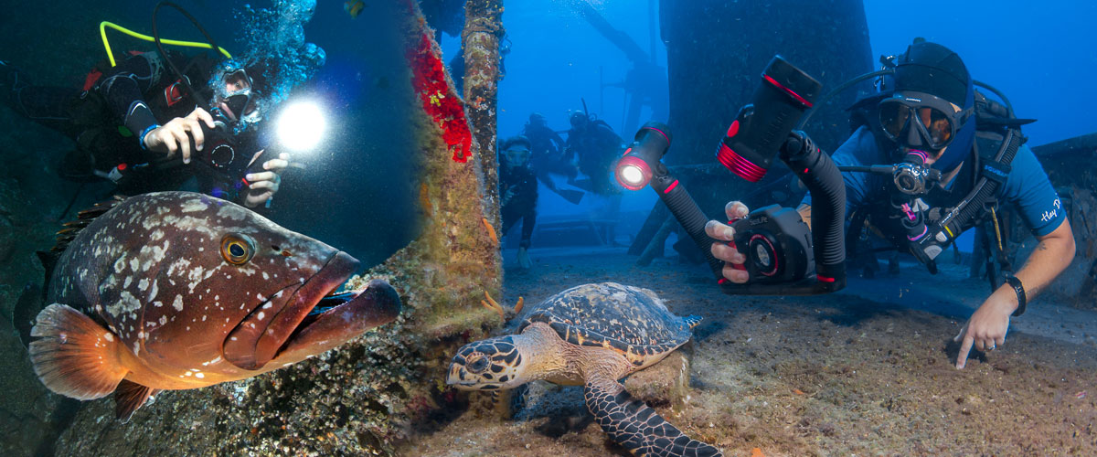 how to choose a dive camera light