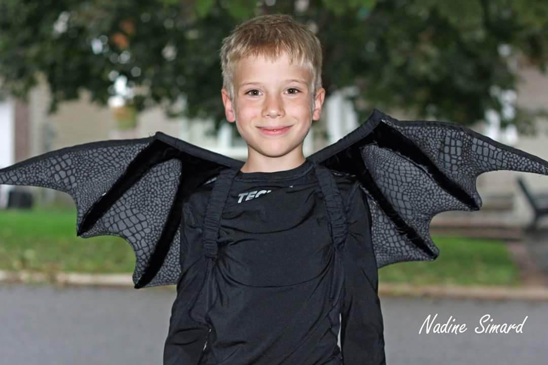 Dragon Wings Sewing Pattern by Mother Grimm