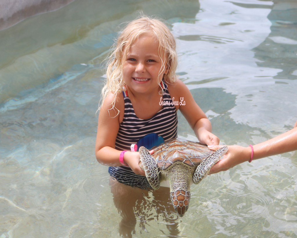 Toddlers at the Cayman Turtle Center