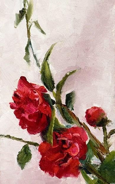 Camellia Painting Seamus Berkeley