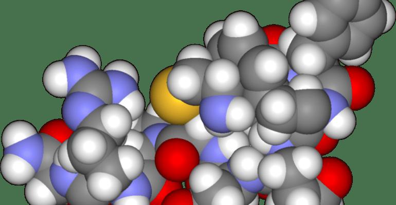 sean lerwill arginine supplement spors nutrition muscle size strength gain