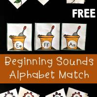 Alphabet Upper and Lowercase Matching with Beginning Sounds Flower Pot