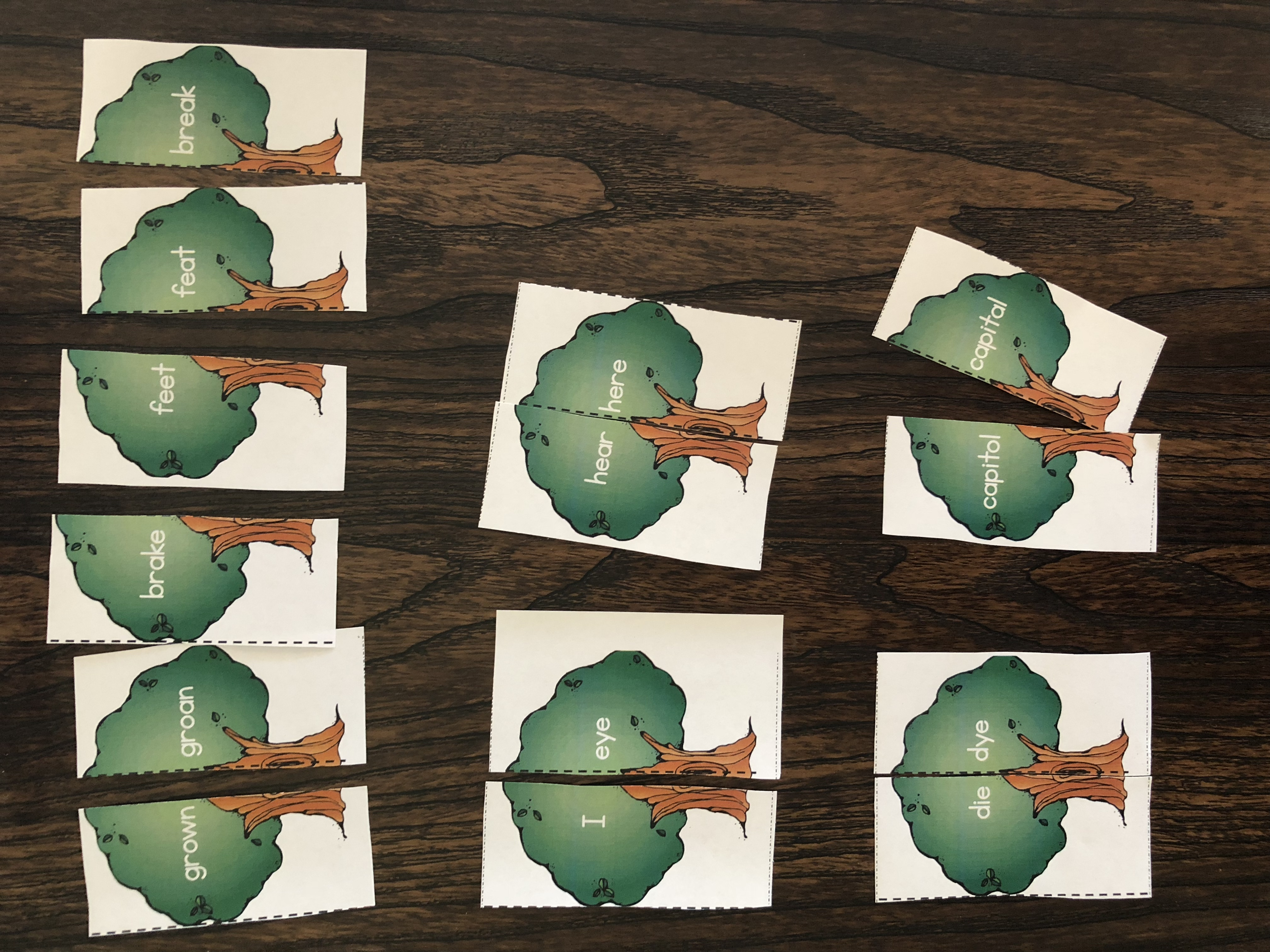 Free Earth Day Homophones Puzzles