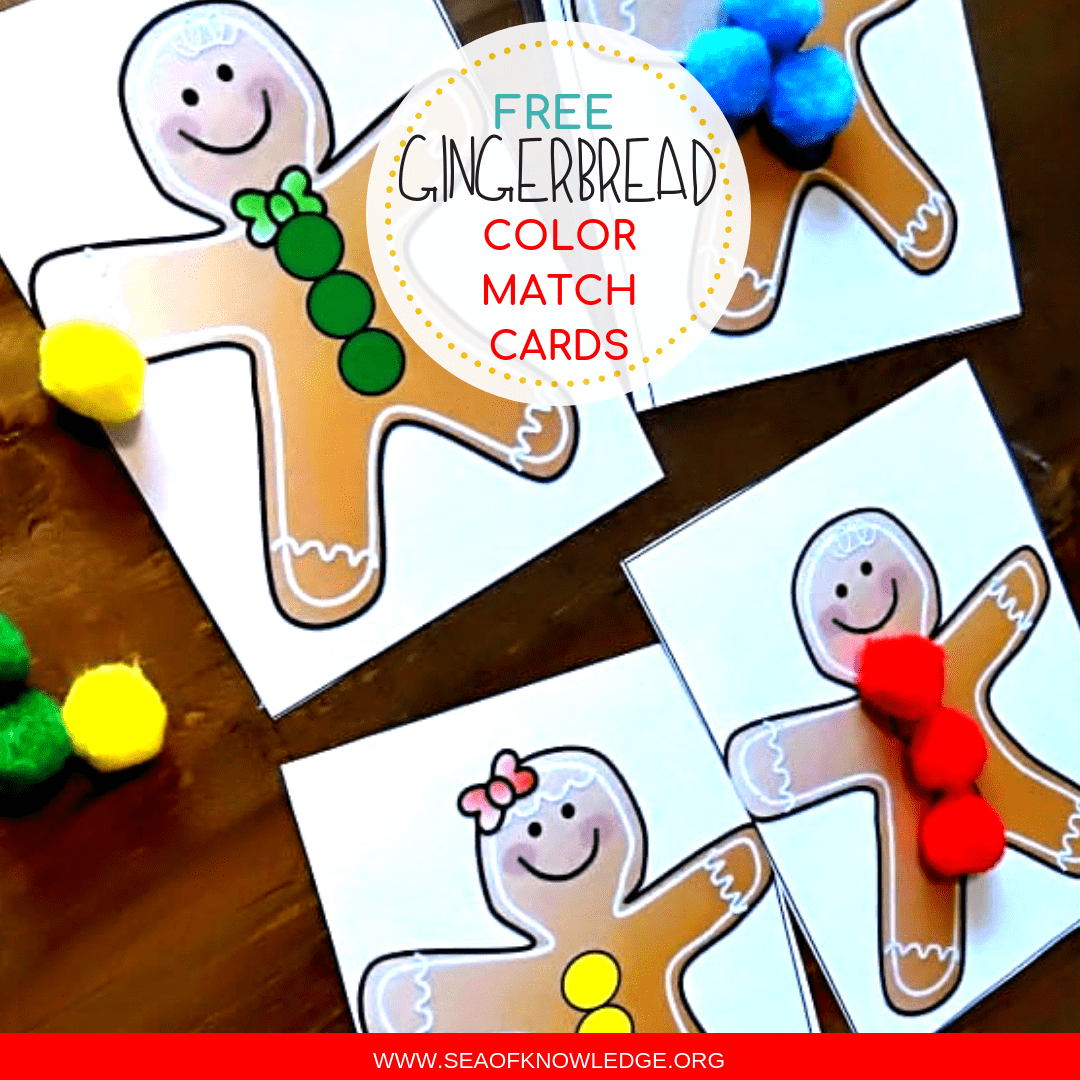 Gingerbread Color Match Hands On Activity Cards Toddlers