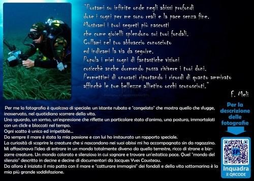 Introduzione alla mostra di fotografia subacquea