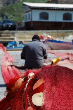 Le reti da pesca al sole