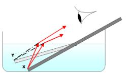 Rifrazione della luce sott'acqua