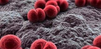 Quarto caso de meningite confirmado na Grande Vitória em novembro