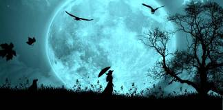 Luna, a mensagem da luia