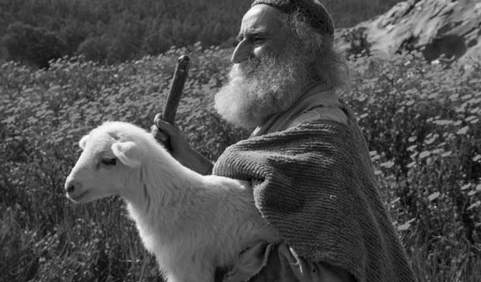 Pastores esquecidos