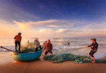 Pescador, vendedor ou consumidor, quem você é?
