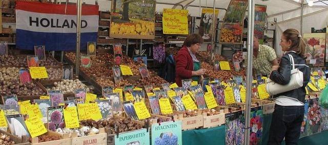 flower bulbs stand at an open market