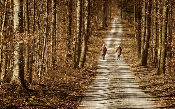 Senior couple walking in the woods