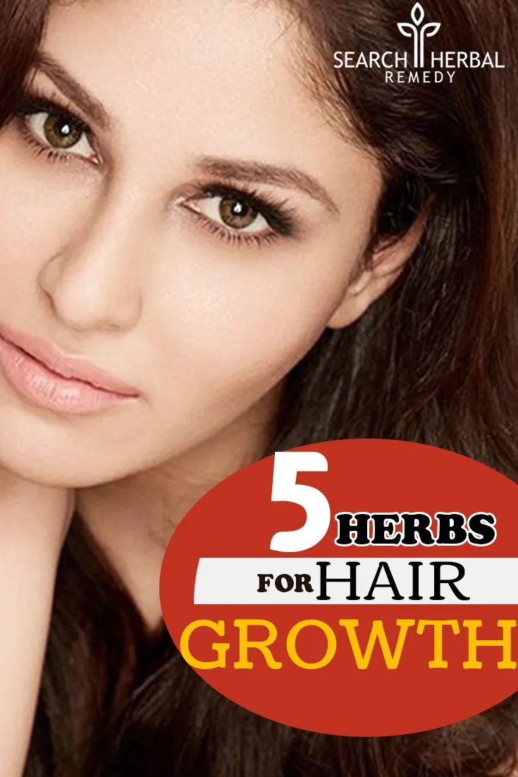 5-herbs-for-hair-growth