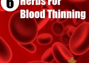 6 Most Common Blood Thinning Herbs