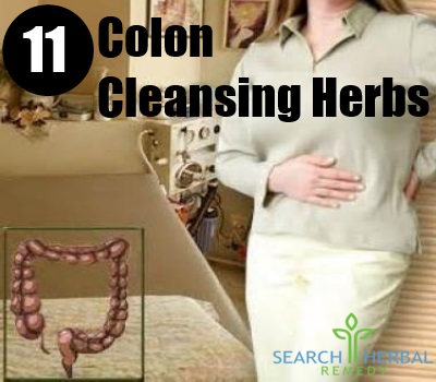 11 colon cleansing herbs
