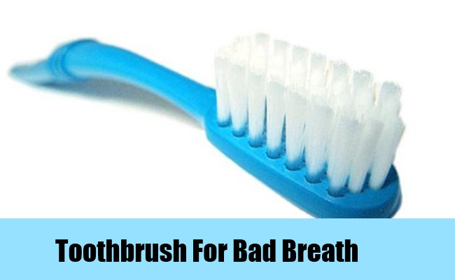 Carrying a Toothbrush