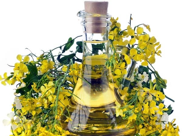 Mustard Oil And Basil Leaves