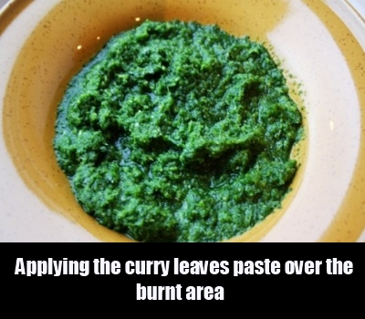 curry leaves paste