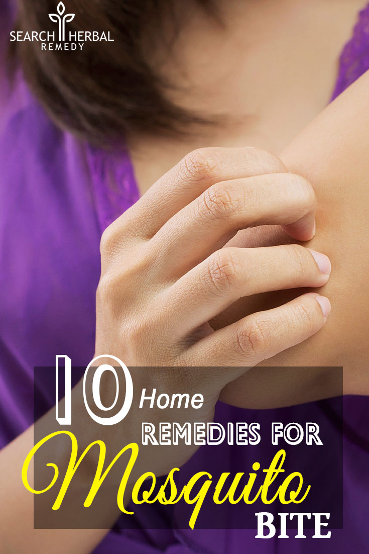 10-easy-home-remedies-for-mosquito-bite