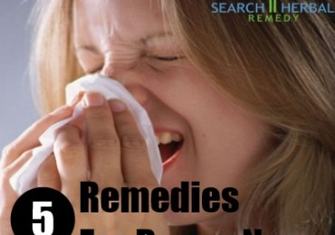 5 Remedies For Ruuny Nose