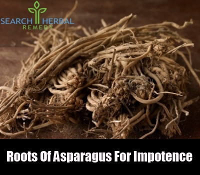 Roots Of Asparagus