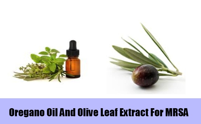 Oregano Oil And Olive Leaf Extract