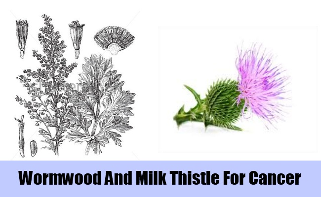 Wormwood And Milk Thistle