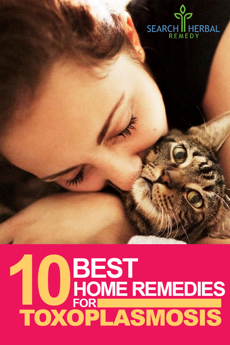10-best-home-remedies-for-toxoplasmosis