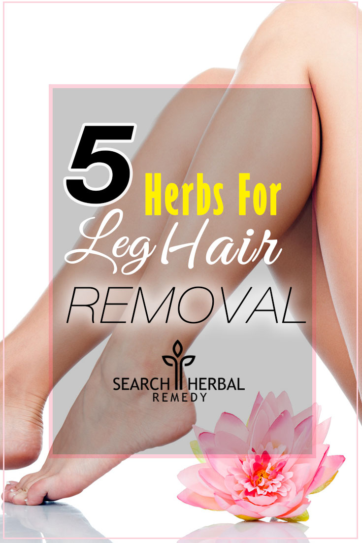 5-herbs-for-leg-hair-removal