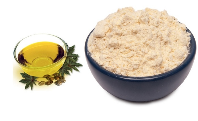 Castor Oil And Chickpea Powder