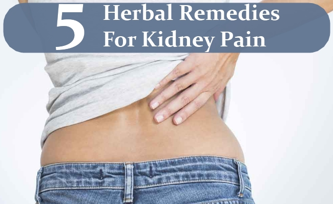 Herbal Remedies For Kidney Pain