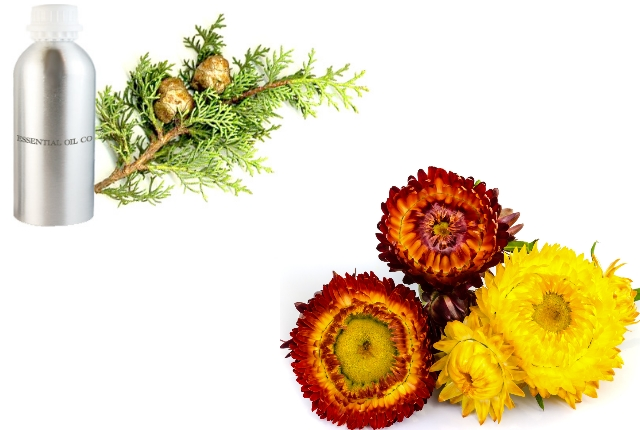 Helichrysum And Cypress Oil Blend