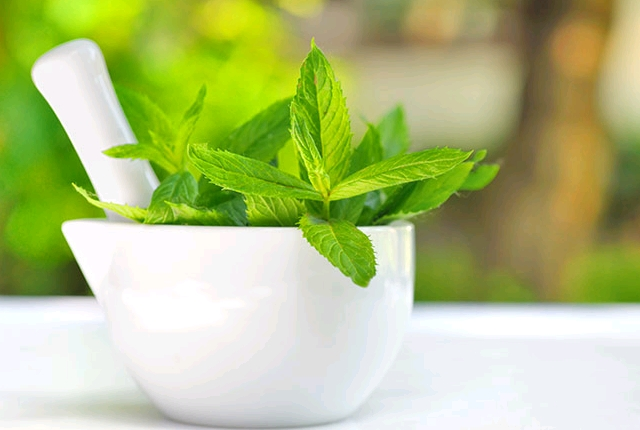 Mint Leaves And Water