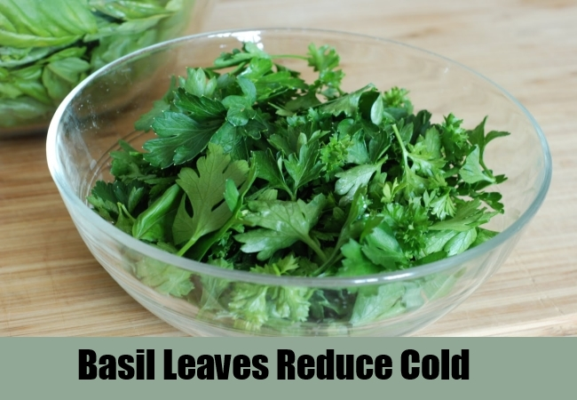 Basil Leaves Reduce Cold