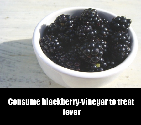 Blackberry-Vinegar Remedy