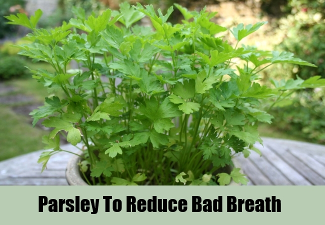 Parsley To Reduce Bad Breath