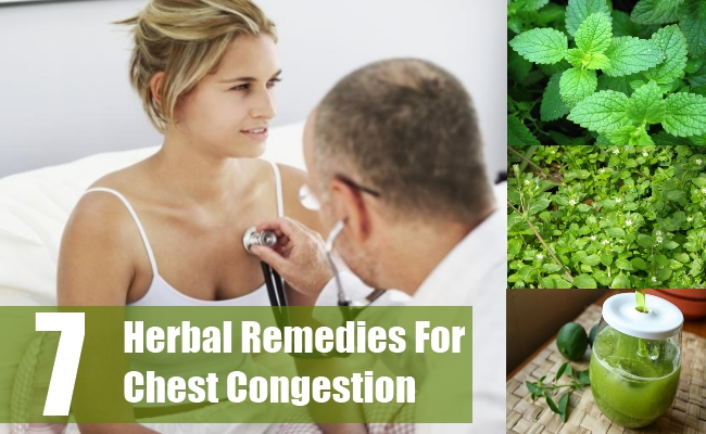 Herbal Remedies For Chest Congestion