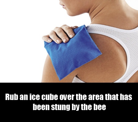 Ice Packs Or Cold Compress