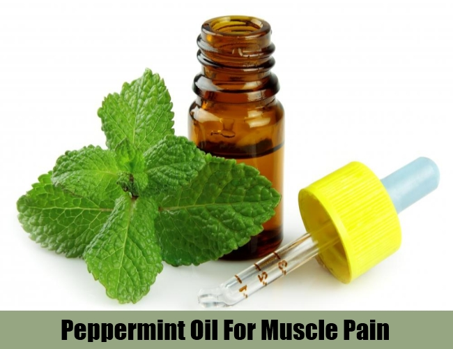 Peppermint Oil For Muscle Pain